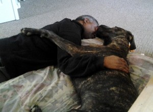 Man and Great Dane hugging