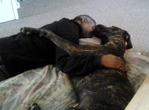 Man and Great Dane hugging