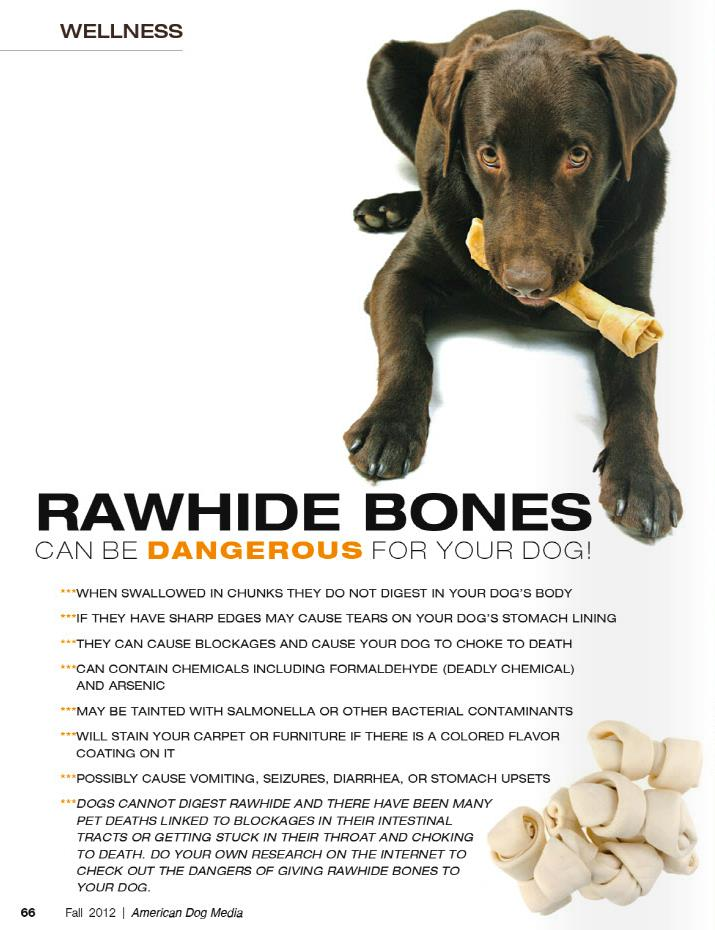 Feed Raw REAL Bones