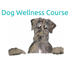 DOGgone Wellness Course