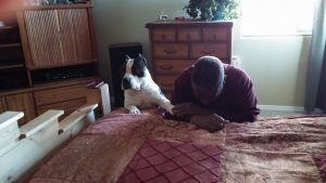 American Bully dog praying with owner