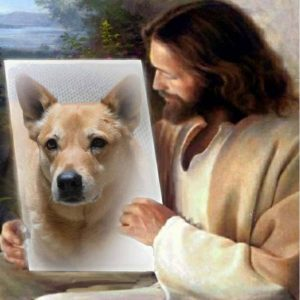 Jesus showing Carolina Dog