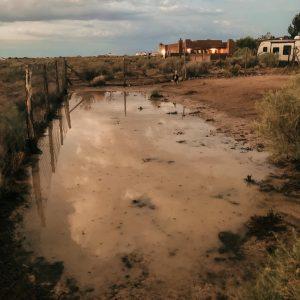 Backyard desert flood