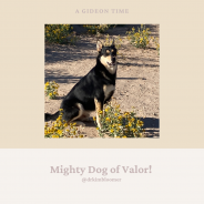 Mighty Dog of Valor!